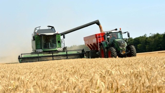 La cosecha de cereal da sus últimos coletazos en Guadalajara con una mayor producción
