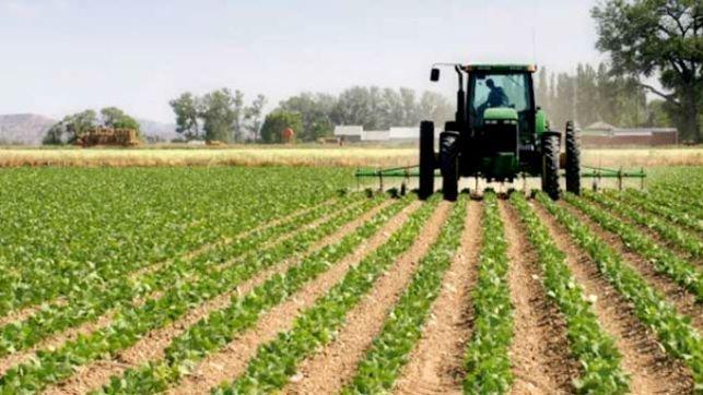 Castilla-La Mancha tenía 3,5 millones de hectáreas de cultivo en el año 2018