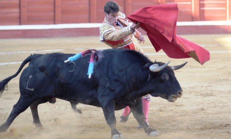 La UTE Casas-Amador prepara la Feria del Renacimiento en Albacete