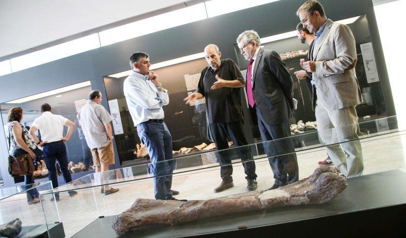 El primer dinosaurio de Lo Hueco es un titanosaurio con nombre cervantino