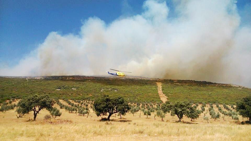 Se declaran dos incendios agrícolas en las provincias de Ciudad Real y Toledo