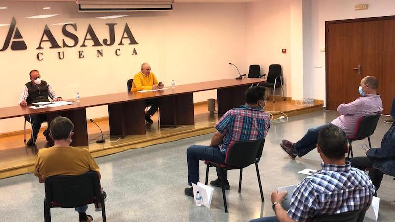 Asaja lamenta que la Administración no tome medidas por los bajos precios del cereal