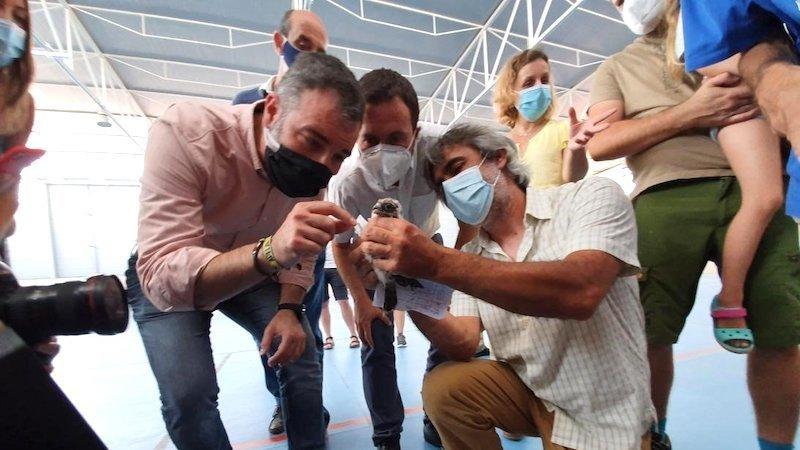 CLM participa en un proyecto de reintroducción en la región del cernícalo primilla