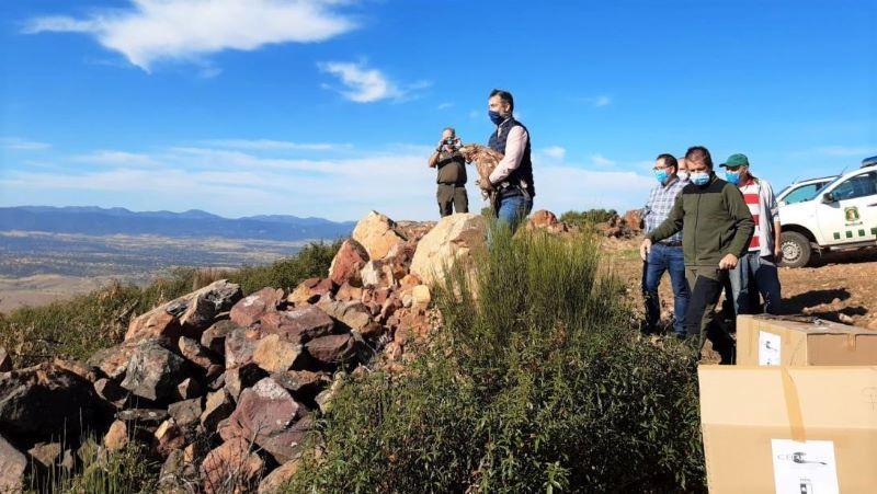 Junta trabaja en la revisión del Plan Regional de Uso Ilegal de Venenos en el medio natural