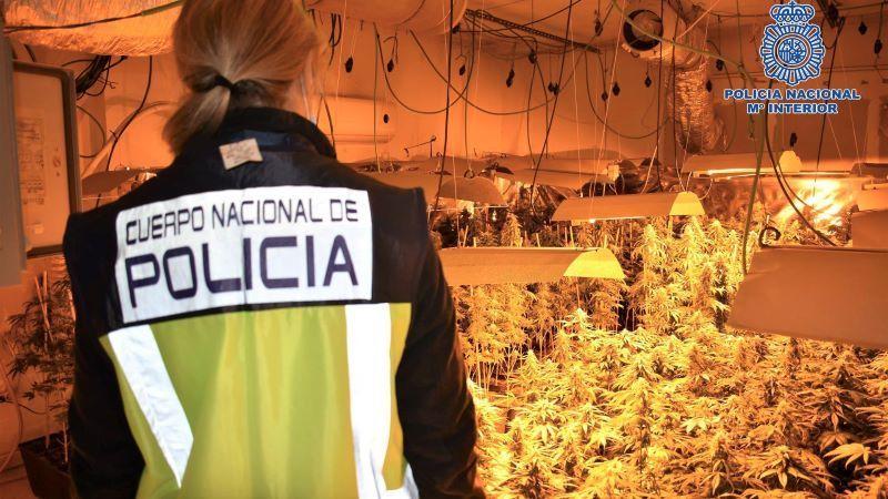 Tres detenidos y desmantelado un cultivo de marihuana en un chalet de Ontígola