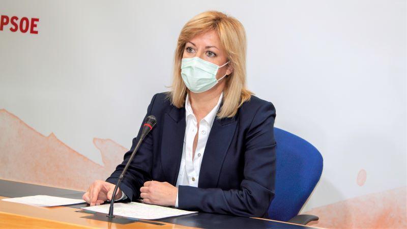 PSOE defiende el pleno institucional en el parlamento que